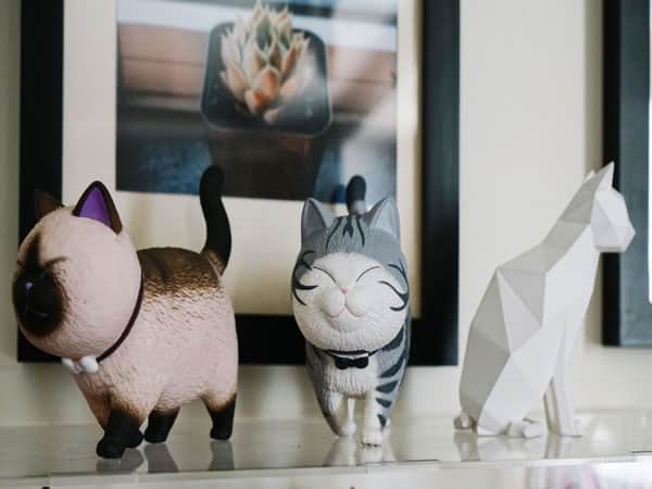 Accessoires de chats pour humains
