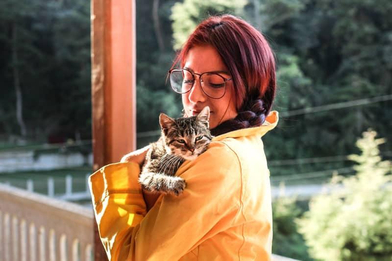 Ronronthérapie : une connexion bienveillante entre le chat et l'homme