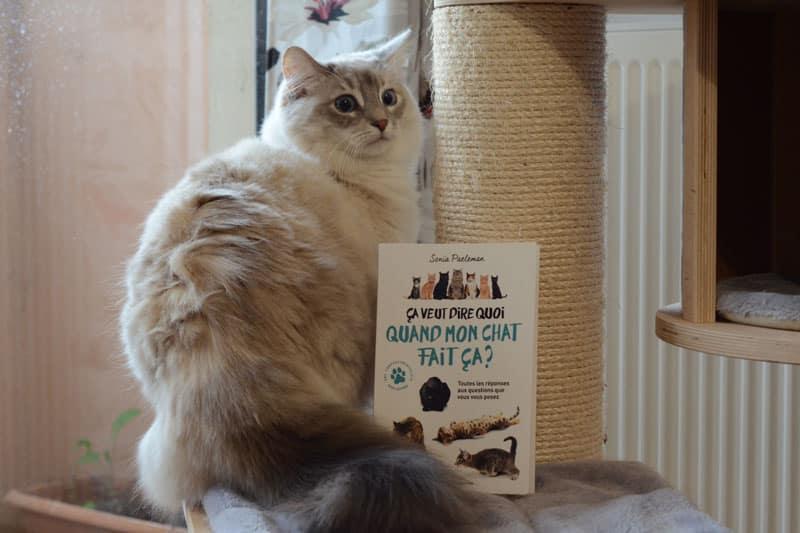 Ça veut dire quoi quand mon chat fait ça ? - Sonia Paeleman